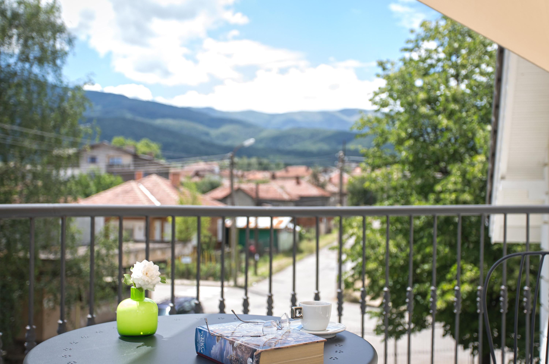The view over Berkovitsa